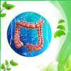БАДи для очищення організму